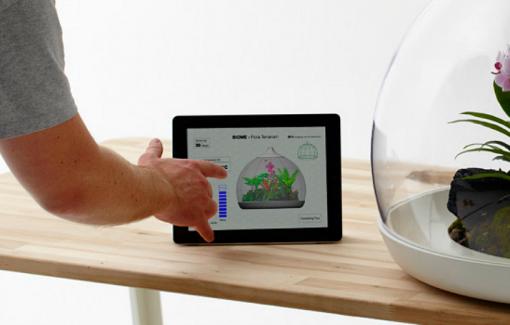 biome terrarium mit ipad anschluss mac egg. Black Bedroom Furniture Sets. Home Design Ideas