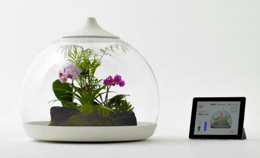 Biome Terrarium mit iPad Anschluss