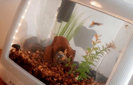 iMac G3 als Aquarium