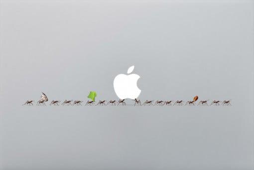 bittenfruit Decal Ants