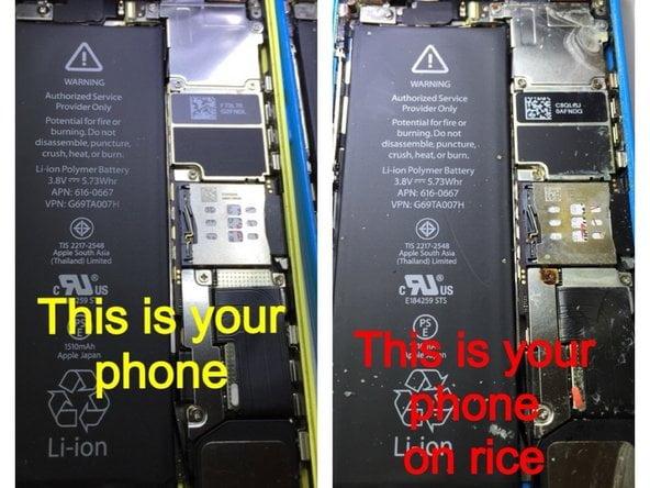 iPhone ins Wasser gefallen? Mit Reis trocknen ist ne blöde Idee!
